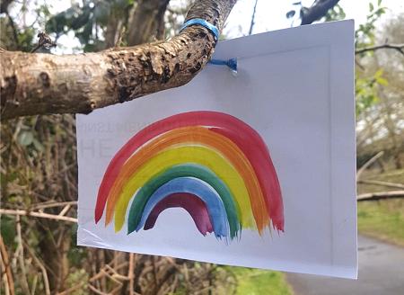 Rainbow tied to tree