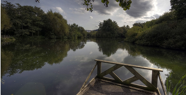 Trafford Ecology Park